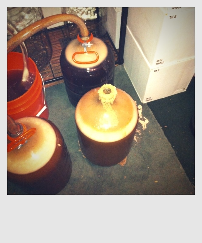 """The """"Redder is Bedder"""" wanted release from the confining carboy."""